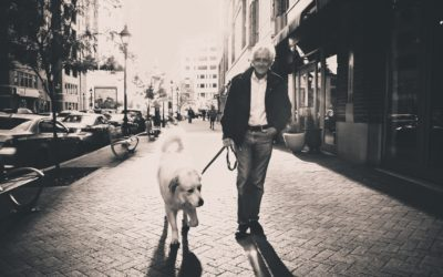 Pets and animal assisted therapy in the elderly